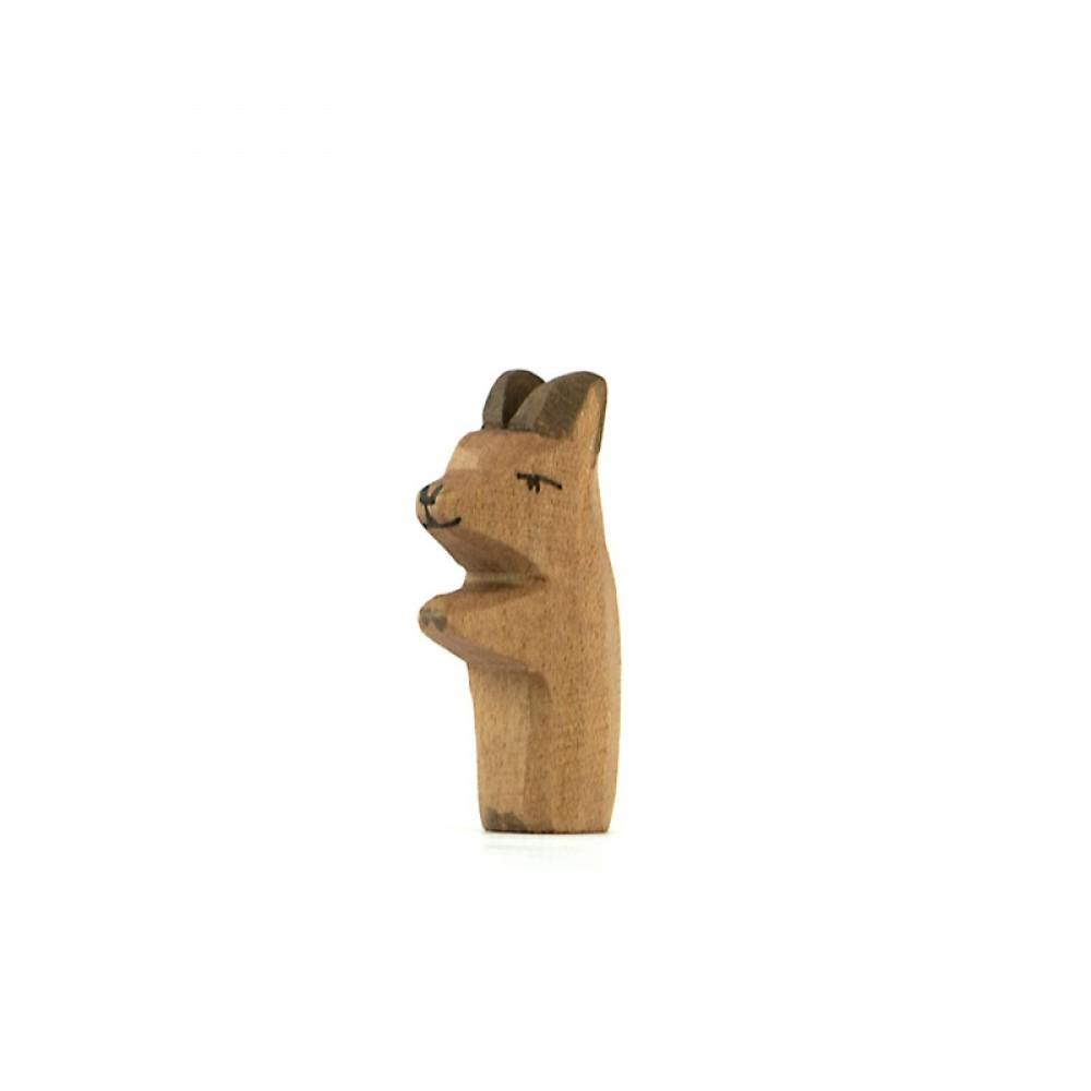 Ostheimer - kænguru unge