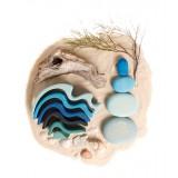 Grimms - byggesæt - river pebbles - 4 dele