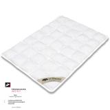 N-Sleep-kapok babydyne-70x100 cm.
